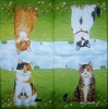1130 Cats Serviette