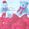 2589 Teddy Christmas Serviette