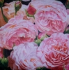 4464 Blumen Rose Servietten