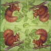 5164 Squirrel green Serviette