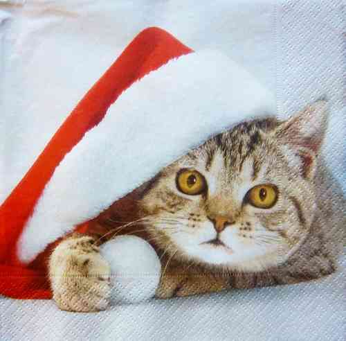 7177 Santa Cat Serviette