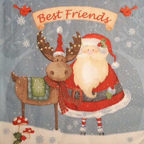 11491 Best Friends Serviette