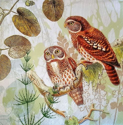 11628 Pair of Owls Serviette