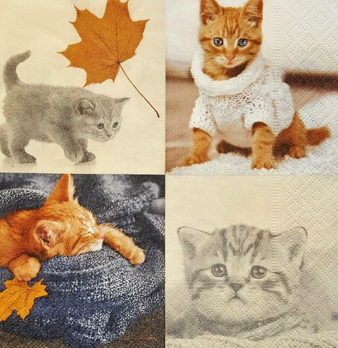 11657 Autumn Cats Serviette