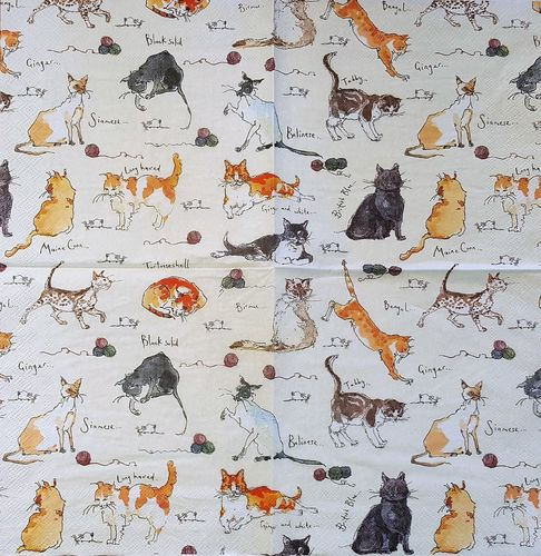 11658 Cats Serviette