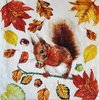 11773 Eating Squirrel Serviette
