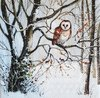 11792 Winter owl Serviette