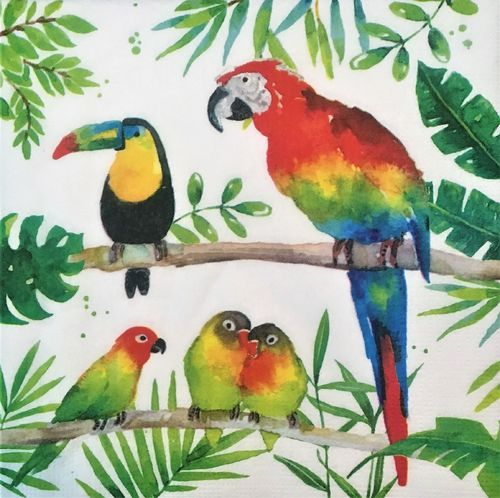 12434 Tropical Birds Serviette