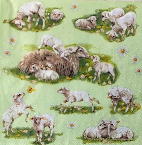 12470 Spring with Lambs Serviette